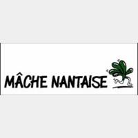 Mâche Nantaise